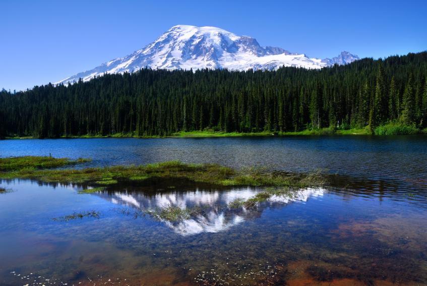 Relection Lakes - Mount Rainier